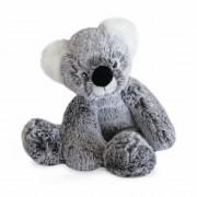Koala Sweety, 23cm Plüschtier im Karton Histoire d'Ours | Kuscheltier.Boutique